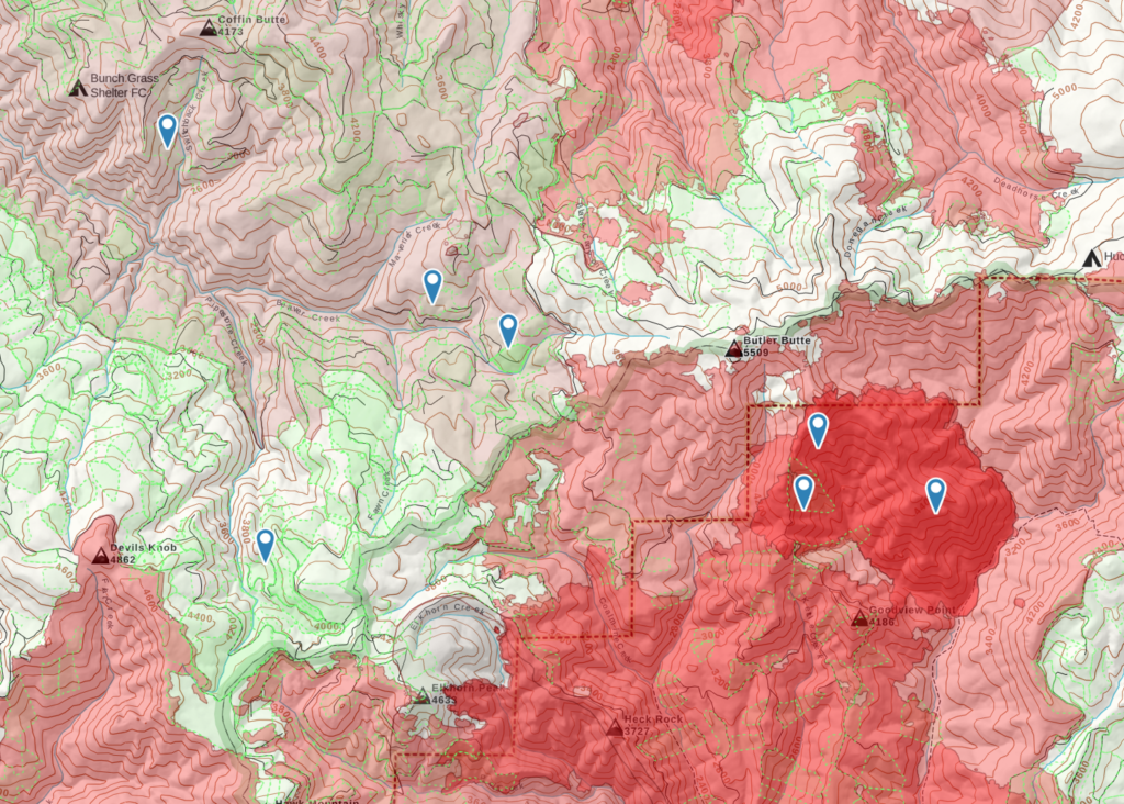 morel mushroom hunting map with burn zones and timber cut regions highlighted